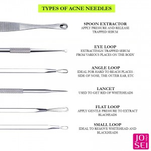 AN14 Rose Gold Blackhead Extractor With Lancet